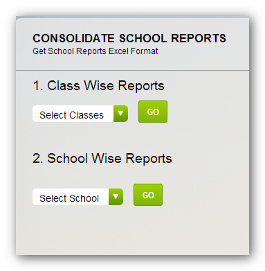 ppe consolidated school report